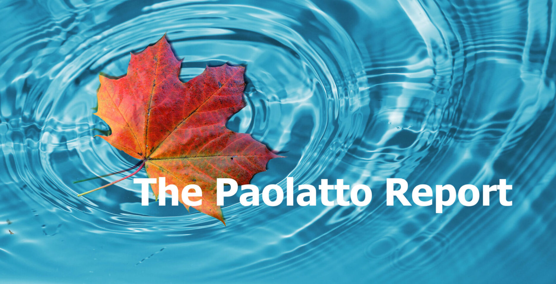 The Paolatto Report